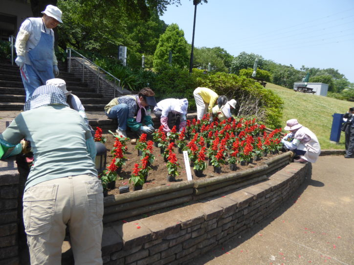 公園ボランティア募集(4月13日新規説明会開催)@津久井湖城山公園