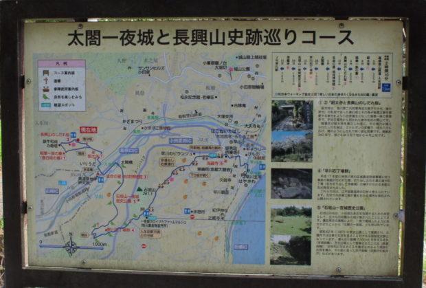 樹齢340年、滝のように咲き乱れる小田原・長興山しだれ桜