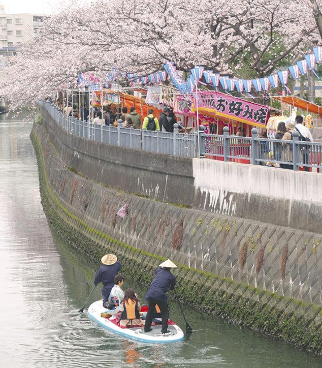 川沿いに続く700本の桜並木 2018年「大岡川桜まつり」は4月7日・8日