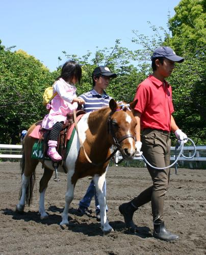 横浜で「馬とあそぼうこどもの日」CKB横山剣ミニライブも@馬の博物館【入館無料】