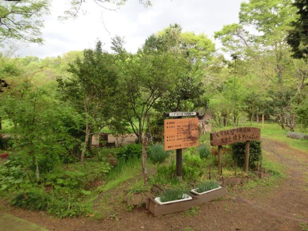 秦野名水でコーヒー堪能、ナデシコの苗もらえるスタンプラリーも@くずはの家