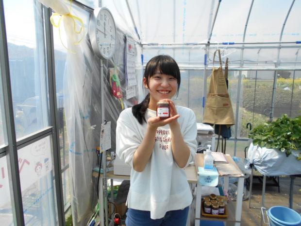 小田原市栢山にイチゴ狩り「ベリーの森」オープン!甘くて美味しいとちおとめ・章姫が食べ放題