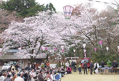 第53回滝山城址「桜まつり」野点・甘酒サービスも【八王子市】
