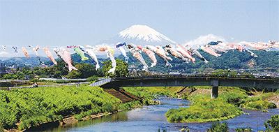 富士山や箱根連山背景に300匹が泳ぐ「第12回鈴川鯉のぼりまつり」