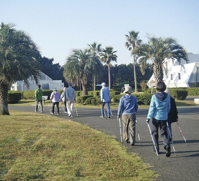 週2日!リズミカルな歩行で健康維持「ノルディックウォーキング」@辻堂海浜公園