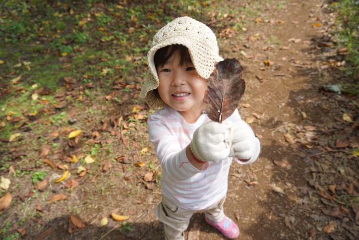 雨の日だって遊んじゃお!葉っぱ遊びや基地づくり…川崎・黒川の森で自然遊びしよう
