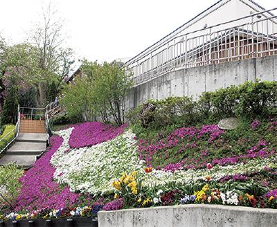 スマイルオブキッズ設立15周・リラの家開設10周年記念式典【参加者募集】
