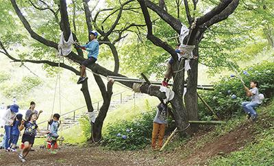 ほどがやわくわくプレイパーク@県立保土ケ谷公園
