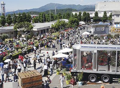 400種1000本のバラが工場を包み込む!「ばら鑑賞会」日本フルハーフ㈱厚木工場