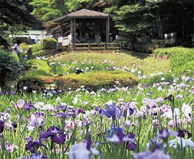 「町田見どころバスツアー」【定員40人】