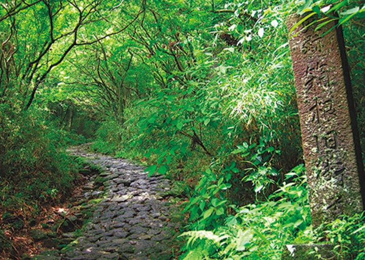 箱根の自然と歴史を知る「江戸時代の東海道を歩く」7月20日(金)開催!