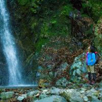黒竜の滝/秦野のお手軽&穴場滝スポット 滝にも触れちゃう