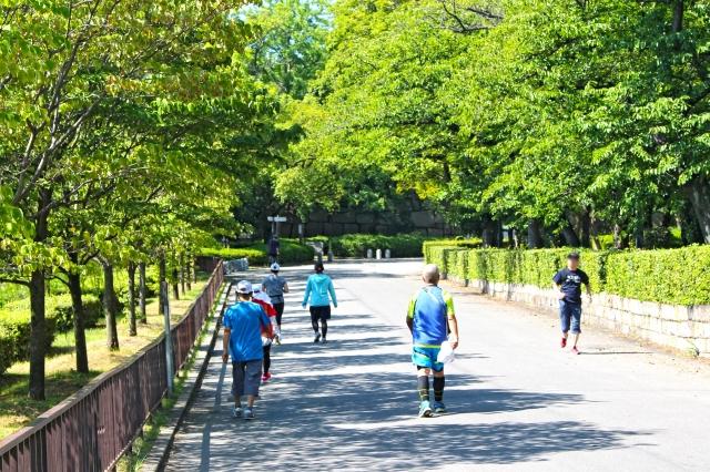 瀬谷水緑の健康ウォーク「金沢八景散策」【約10㎞・申込不要】