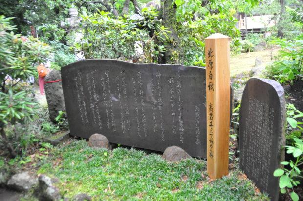 【潜入レポ】町田に溢れる穴場観光スポット!?20代男子が名所ガイドツアーに参加してみた