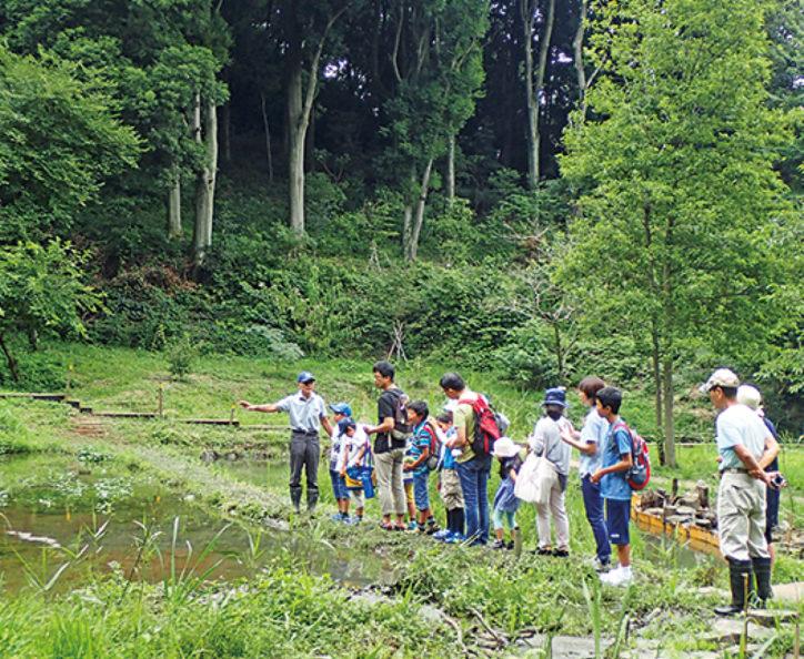 川崎市内の遊水地や河川で調査しよう「夏休み水環境体験教室」