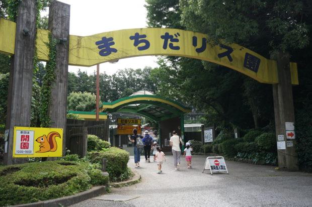【子連れで近場おでかけ】「町田リス園」は看板とアートあふれる癒しスポット