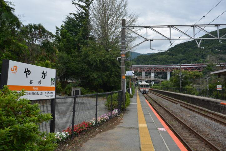 【低山レポ・標高723m】大野山は神奈川の小アルプス 谷峨駅~薫る野牧場めざして初登山