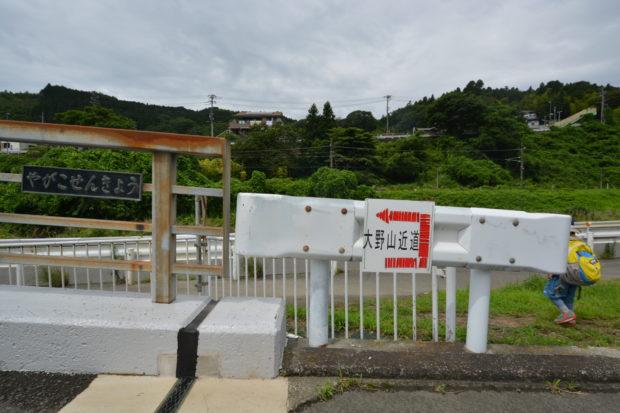 【低山レポ・標高723m】大野山は神奈川の小アルプス 谷峨駅~牧場めざして初登山