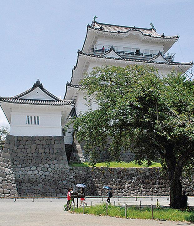 小田原城天守閣で35℃以上は「猛暑日割引」!