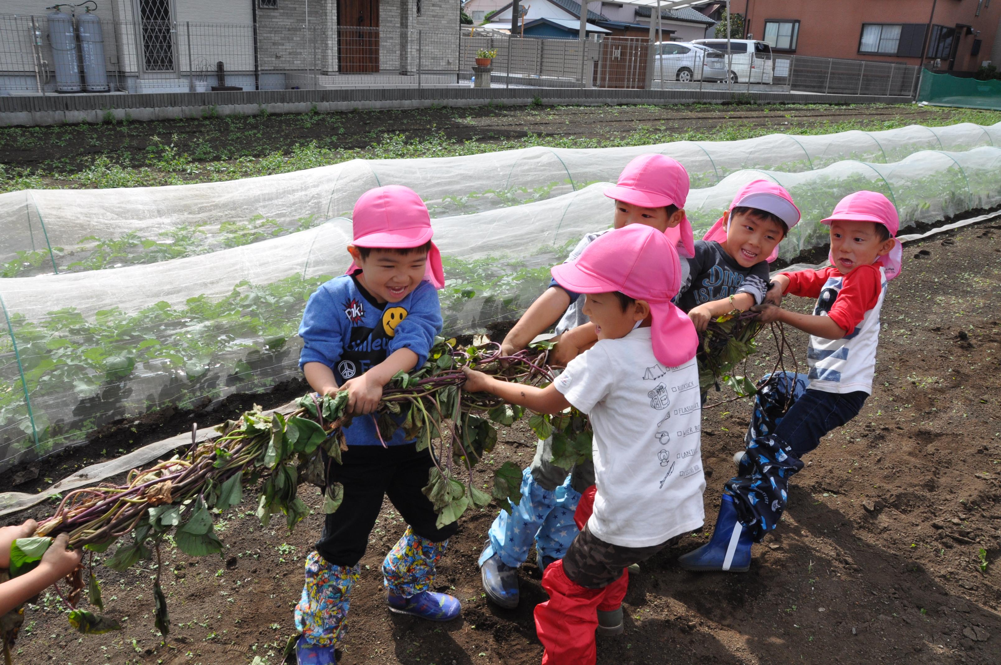 伊勢宮幼稚園/輝く笑顔を咲かせたい!【厚木市】