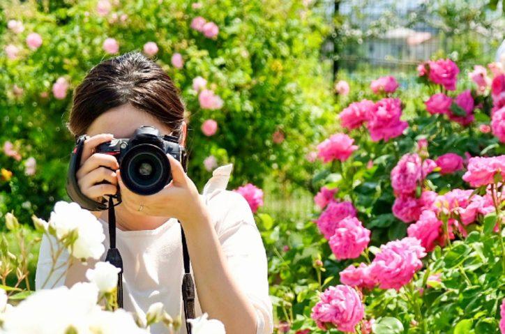 写真や花テーマの体験イベントも 20周年「あやせ文化芸術祭」@市役所市民展示ホール