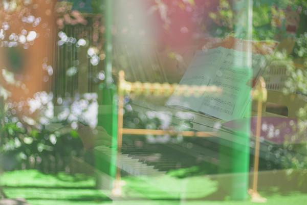 「白根幼稚園」9月12日(水)入園説明会/就学前教育で英語・体育・音楽も【横浜市旭区】
