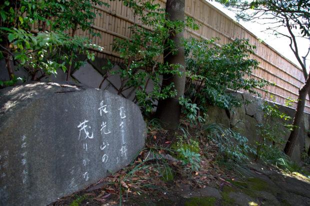 妙蓮寺駅前、多世代が集う憩いの場【横浜市港北区】