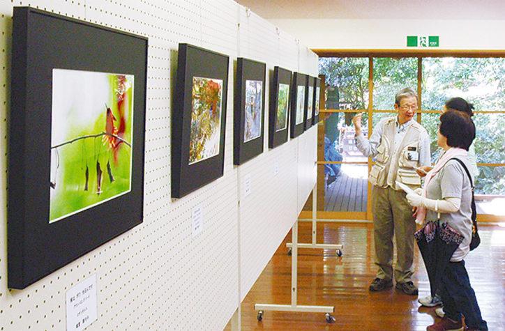 開園25周年記念企画展の公園写真を募集中!@県立座間谷戸山公園
