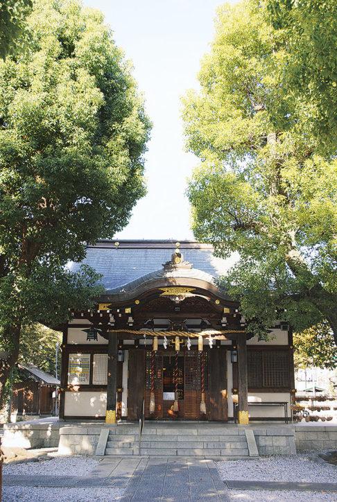 七五三詣は橘樹神社へ【横浜市保土ケ谷区】
