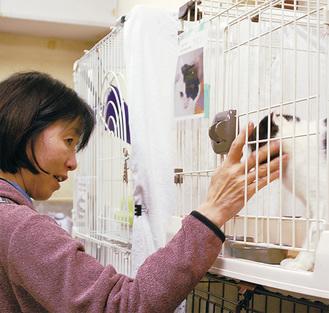 神奈川県動物保護センター見学会【定員40人】