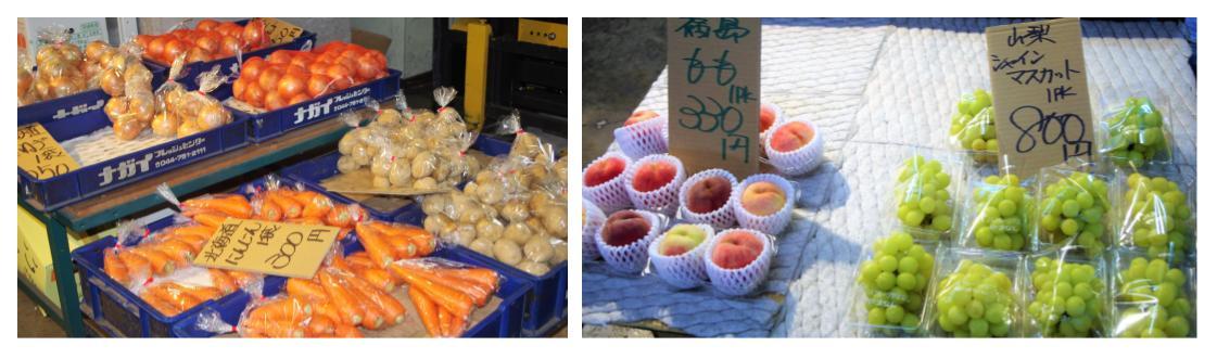 朝市はしばらくお休み【体験取材レポ】川崎市北部市場に買い物に行ってみました!一般客大歓迎でした!《入門編》