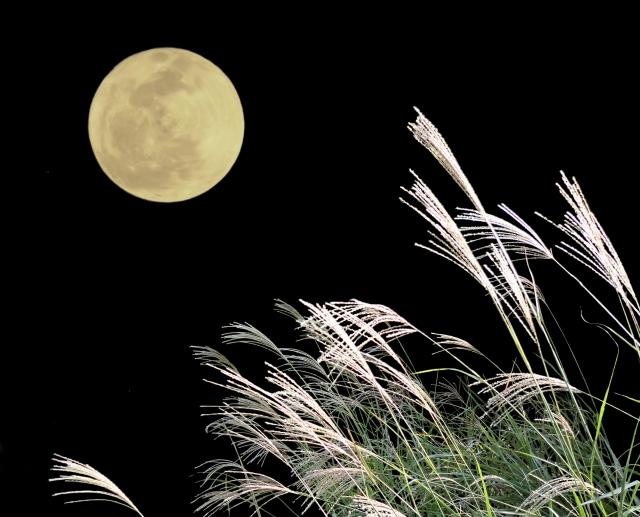 「満月と能管 其の弐」幻想的な雰囲気のと古典楽器楽しんで