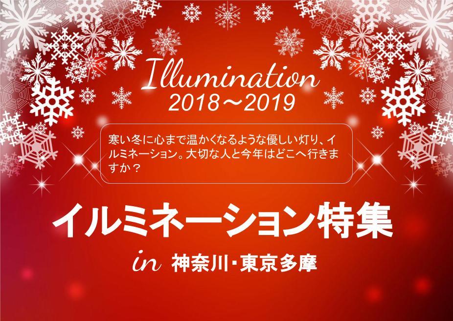 あなたの近くにもあるイルミネーション~神奈川周辺で集めました~【2018~2019】