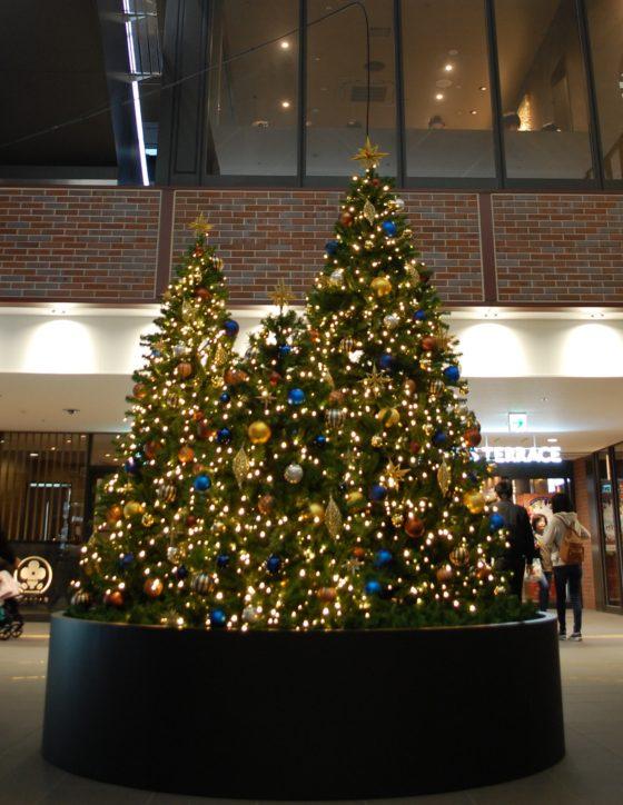 クリスマスツリーがお出迎え~改札前に登場~イベントも@相鉄線二俣川駅