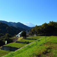 <残り1区画>【海と山の絶景物件レポ】山北町にあった!富士山&相模湾望む〝田舎リゾート〟