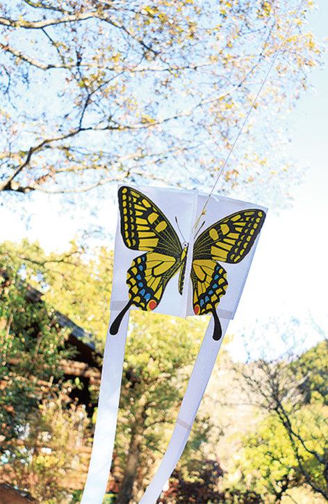 凧をつくってあげてみよう@くずはの家【定員20人】
