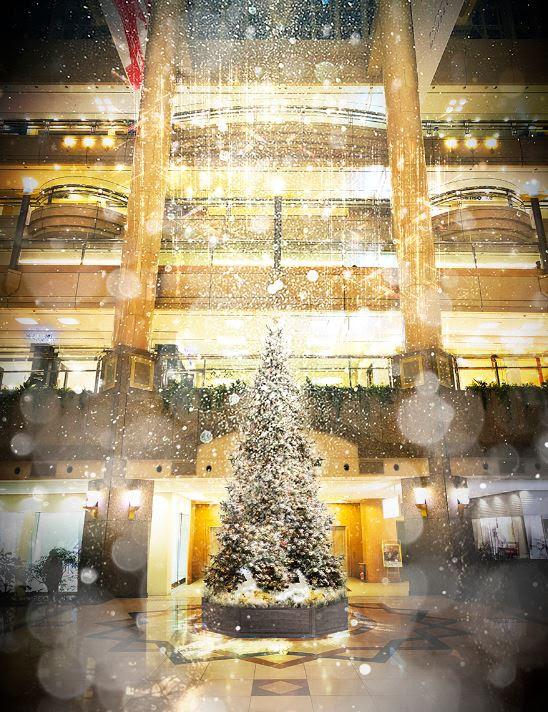 雪降るクリスマスが復活!12月25日はクリスタル・ケイ ライブも@横浜ランドマークタワー