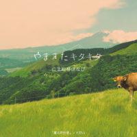 西丹沢で家族のんびり田舎暮らし。「やまきたキタキタ。山北町移住なび」