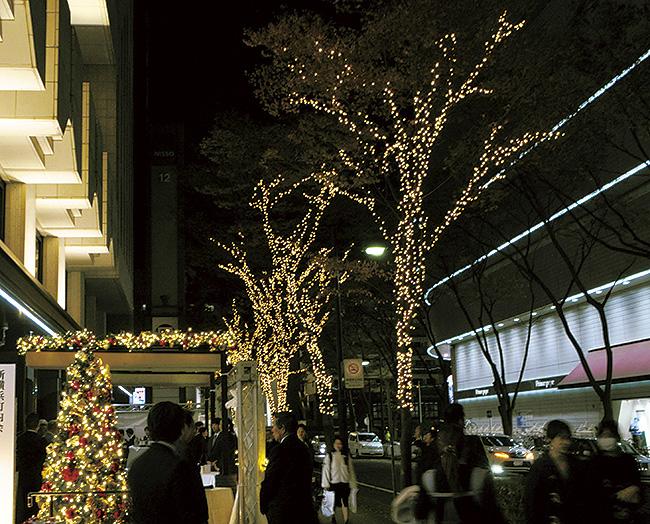 街を照らす光の粒 街路樹にイルミネーション@新横浜グレイスホテル