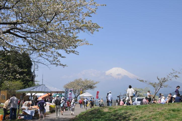 ハイキングにおすすめ「大野山」の山開き 山北町の山菜や農産物販売も
