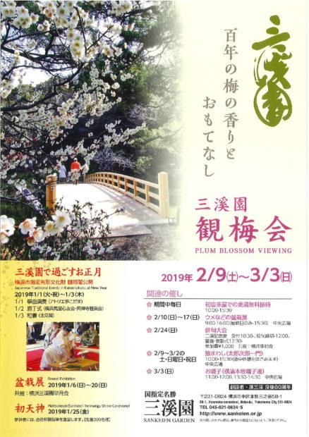 横浜三溪園で歴史ある観梅会『臥竜梅(がりょうばい)』『緑萼梅(りょくがくばい)』も