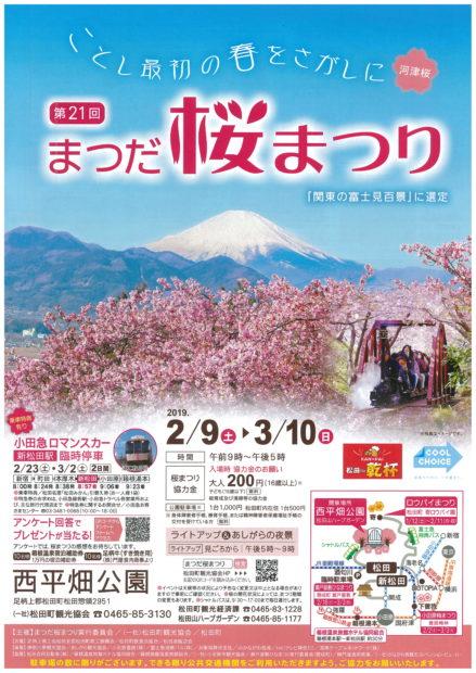 素晴らしい眺望と河津桜の競演 「まつだ桜まつり」に行こう!@松田町