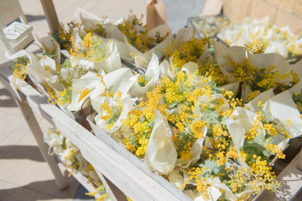 「国際女性デー」はミモザの花で女性を祝福しよう!フォトコンも同時開催@ラ チッタデッラ【川崎市】