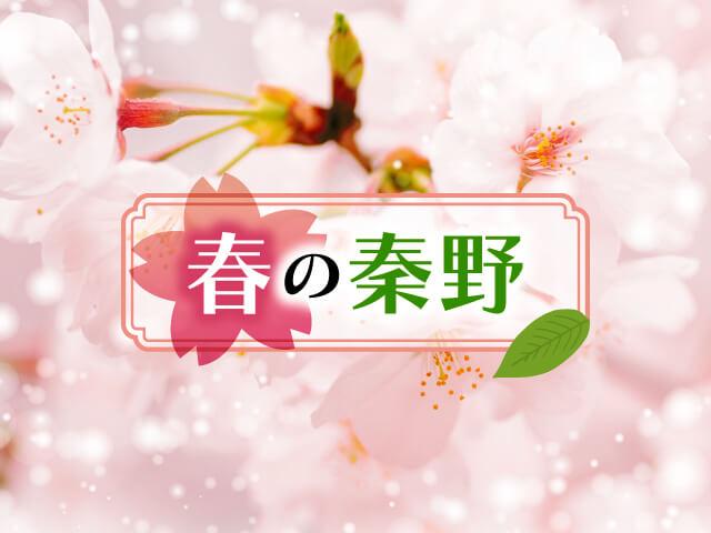 桜を感じる給食の実施