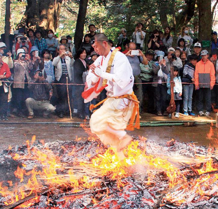愛川町・八菅神社で「春の例大祭」1年の無病息災を祈る火渡りも