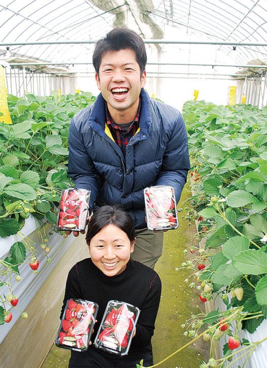 横浜産いちごのワイン誕生!横濱ワイナリーと新羽「ながさわファーム」が連携