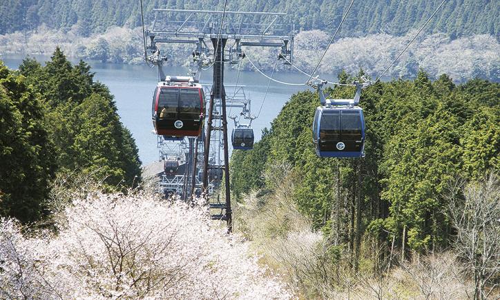 参加無料!箱根ロープウェイで空中散歩に桜植樹&寄木細工体験も