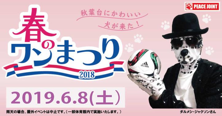 PEACEJOINT春のワン祭り2019x湘南ベルマーレフットサルクラブ
