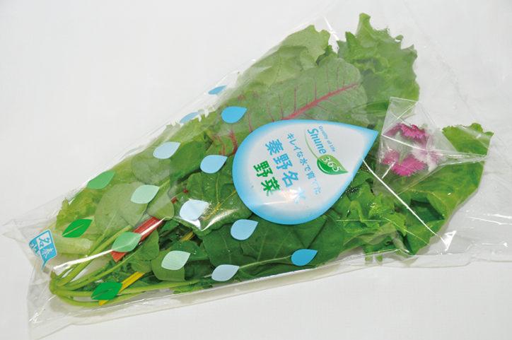 秦野名水野菜