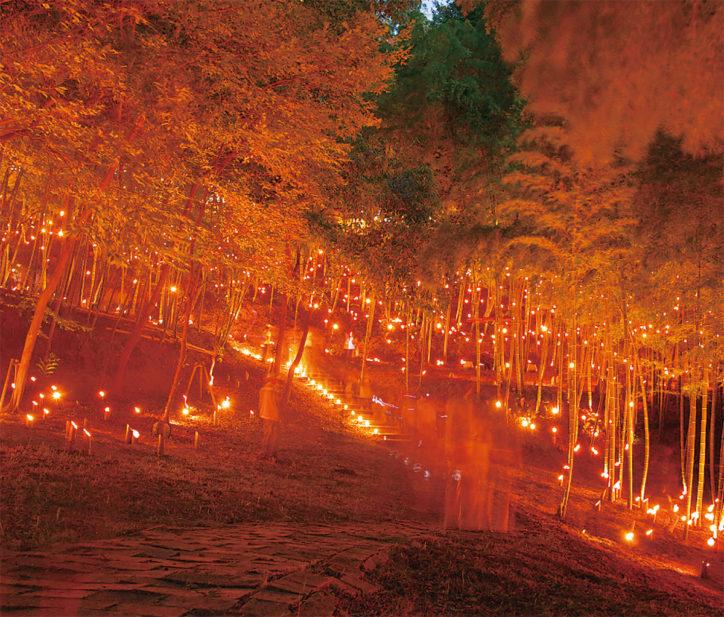 約3000本の竹灯籠で幻想的な雰囲気に「竹灯籠まつり」@横浜国際プール